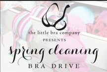 Our Bra Drive Organizers / People and organizations collecting bras on behalf of Free The Girls / by Free The Girls