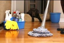 House Cleaning Results / Turn Key Cleaning results.