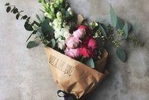 F L O W E R S / full your house with them and watch it bloom