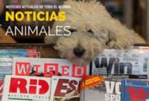 #Informate - Noticias Animales! / Noticias de perros o animales actuales.