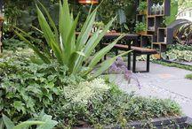 Garden inspiration..