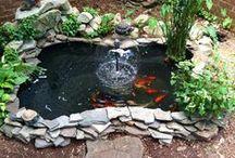 Smartpond 91 gallon polyethylene pond liner fpsk91 for 90 gallon pond liner