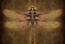 Dragonflies (vážky)