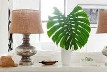 Deco & Hogar / Decoración de interiores, muebles y objetos que nos encantan. Una fuente de inspiración para tu hogar.