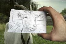 Creative with goats / No goats, no glory!