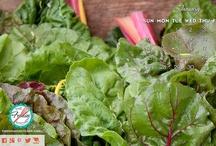 Foodies Freebies / by The Foodies' Kitchen
