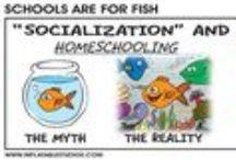 iskolakritika / az oktatási rendszer kritikája