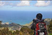 Sì, viaggiare / Le più belle foto dei luoghi che visitiamo, scattate dalle guide e dai viaggiatori.