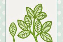 szablony rośliny