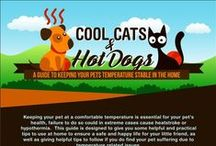 Summer Pet Care / How to keep pets healthy when the heat is on.