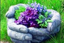 Gardening / by Colyn Bonynge