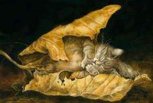 Faits l'un pour l'autre (2) / Chats - Katzen - Cats... and other felines