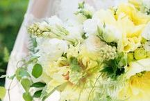 Wedding Theme: Pastel Green and Yellow