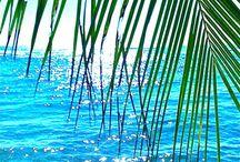 Plaj yolculuklarııı