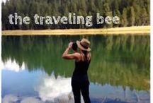 The Traveling Bee / https://travelingbeeblog.wordpress.com