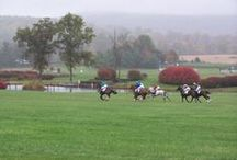 Virginia Gold Cup Races / Our inspiration for the Salamander Resort & Spa pavillion at the 2014 Fall Virginia Gold Cup Races. #SweptAwayInVa #Salamemories