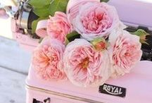 On Wednesdays We Wear Pink / Roze is een fantastische kleur om te dragen! Shop de leukste roze items op Derksenmode.nl!