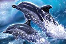 Inspirations dolphins/Wales. Inspiraties dolfijnen/walvissen