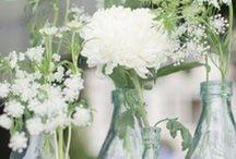 Décorations florales / Accumulations de vases