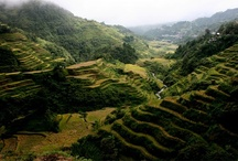 Philippines / All the things and places I love about the Philippines and want to visit