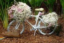 Flowers en Bicycles