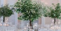 Centrepieces | Weddings / Beautiful centrepieces both tall and low