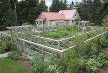 "church ""plants"" / literally - community garden outreach possibilities"