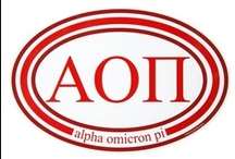 "Alpha Omicron Pi  / ""Exceed the Expectation"" / by USA GreekLife"