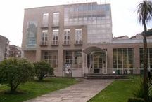 Biblioteca Pública Municipal de Ribadavia / Fotografías Biblioteca