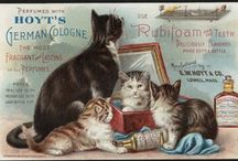 Cats in [Vintage] Ads & Arts / Cats in ads & arts / by Sasyika Arini