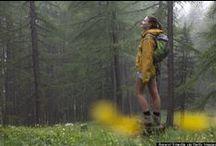 Explore Our Parks & Trails / Paths, Trails, and Recreation