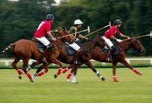 Deportes / Sports / El deporte es una actividad física reglamentada, normalmente de carácter competitivo, que puede mejorar la condición física (Antúnez, M. 2001) de quien lo practica, y tiene propiedades que lo diferencian del juego. +Info : https://es.wikipedia.org/wiki/Deporte