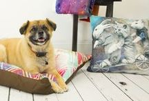 KESS Art Pet Items / Decorate for Fido with our line of pet products ranging from pet beds to bandanas to food bowls.