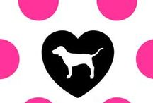 Victoria's Secret Pink ♥ / by Arianna Sabloff