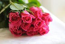RÓŻE DZIECI SŁOŃCA / róze , dekoracje,fotografie, dodatki, bukiety