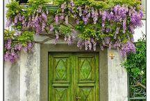 """Ajtók / """"Az ajtók azért voltak zárva, mert soha nem értettem meg, hogy én vagyok az egyetlen személy, aki kinyithatja őket"""" Paulo Coelho"""