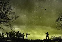 Walking Dead / The Walking Dead + Fear The Walking Dead  / by gianmarco