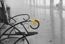 ☂ ☂ DESZCZ ~ RAIN ☂ ☂