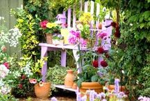 gardens / by Nancy Neal