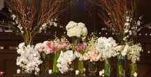 Centerpieces / There's a reason why it's called a centerpiece. Here we're posting some of our favorites!