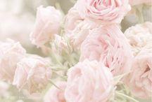 Pretty pastels / I love vintage pastels