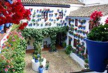 Patios de Córdoba / Descubre la magia de los Patios de Córdoba, Patrimonio Inmaterial de la Humanidad.