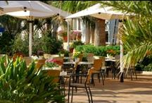 Restauración en Oliva Nova / ¿Quieres conocer la variedad de restaurantes que tenemos en el Resort? - See our full restoration offer in Oliva Nova Oliva Nova Golf Beach & Golf Hotel**** (Para más información haz click aquí / Click here for more info http://ow.ly/x2XXh )