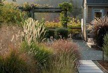 gardens / garten