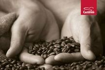 Caffè Castorino / Exclusive import of Italian Coffee Brands - available at www.metacaffe.nl delivers in >32 Countries in EU