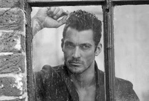 David Gandy / by Cheryl Blazej