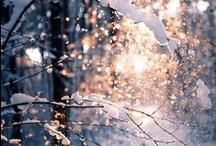 Winter.r.
