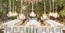 Wedding / Wedding planning