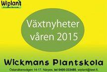 Nyheter 2015 / Nya växtsorter för säsongen 2015.
