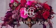 Heartbeats / Our events